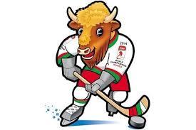чемпионат мира по хоккеую 2014