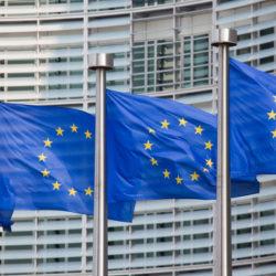 Экзотические европарламентарии