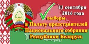 выборы 3