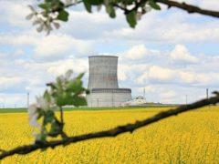Депутат Европарламента: Литовские коллеги в вопросе Белорусской АЭС перегибают палку