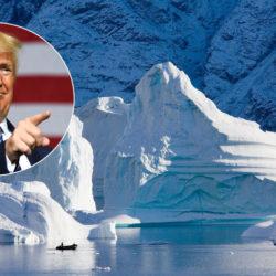 600 миллионов долларов в год: столько хотел предложить Трамп Дании за бессрочное владение островом Гренландия