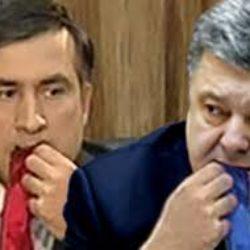 Назначение Михаила Саакашвили – очередной плевок украинскому народу